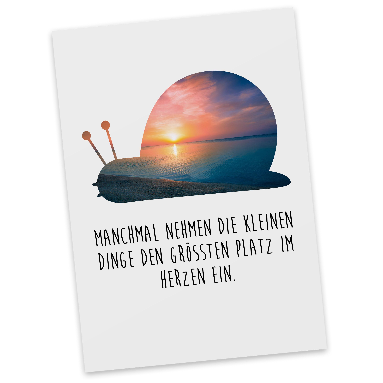 Postkarte Schnecke aus Karton 300 Gramm